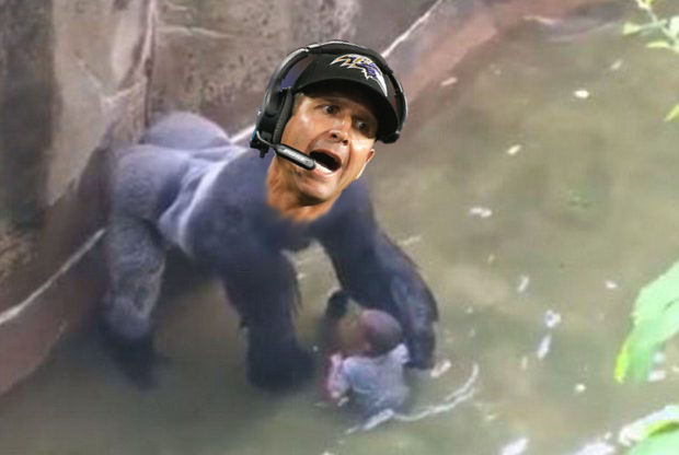 john-harambaugh